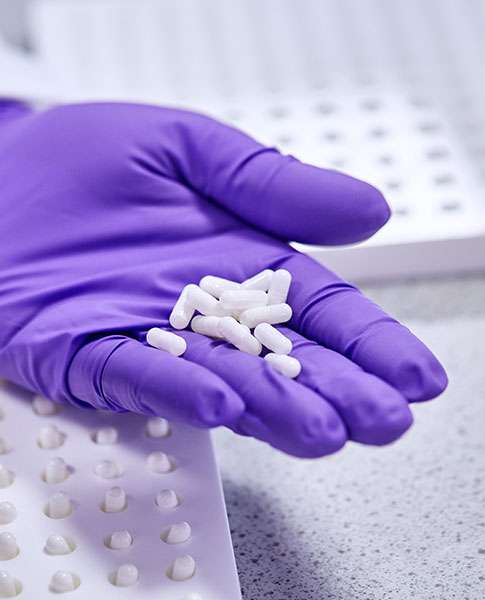 A purple gloved hand holding a handful of capsules during the clinical trial manufacturing process.